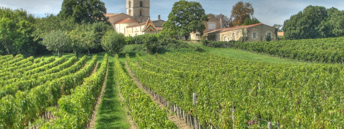Visit to Bordeaux and wine tasting 3