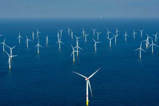Belgian offshore wind energy breaks record