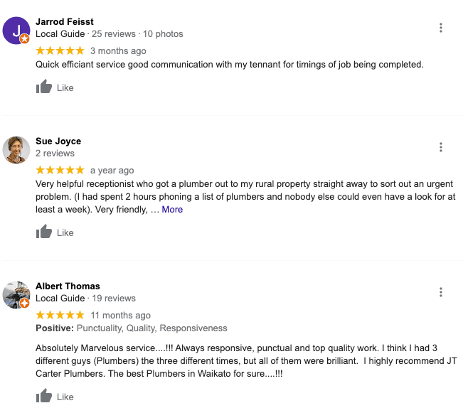 Example of Google Reviews for a plumbing business