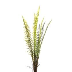 Bregne busk H:66 cm