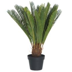 Plante Cycas palme 58cm