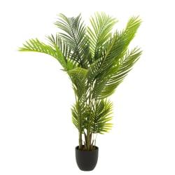 Plante kentiapalme 140cm