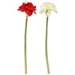 Blomst amaryllis kunstig 70cm ass rød hvit