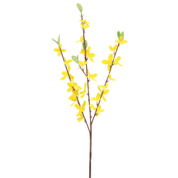 Gren Forsythia gul 54cm