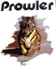 2009 Prowler 230RKS