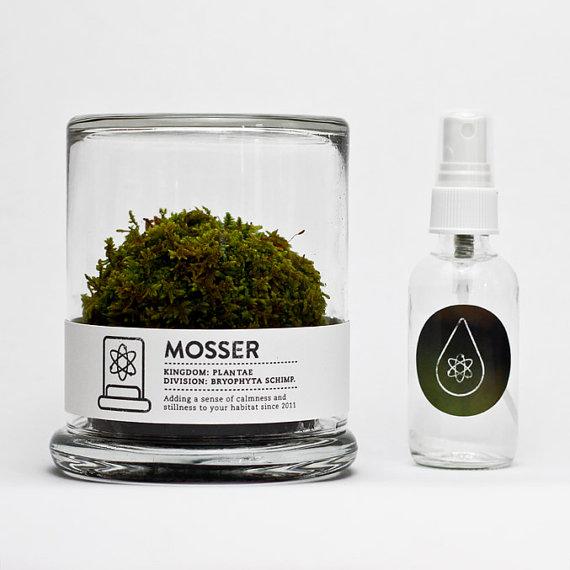 Very Goods Mosser Scientific Glass Moss Terrarium And Spray Bottle