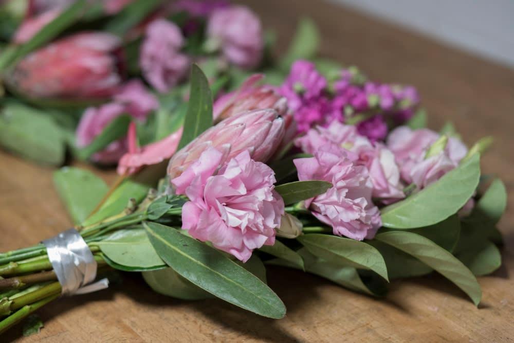 pale pink lisianthus