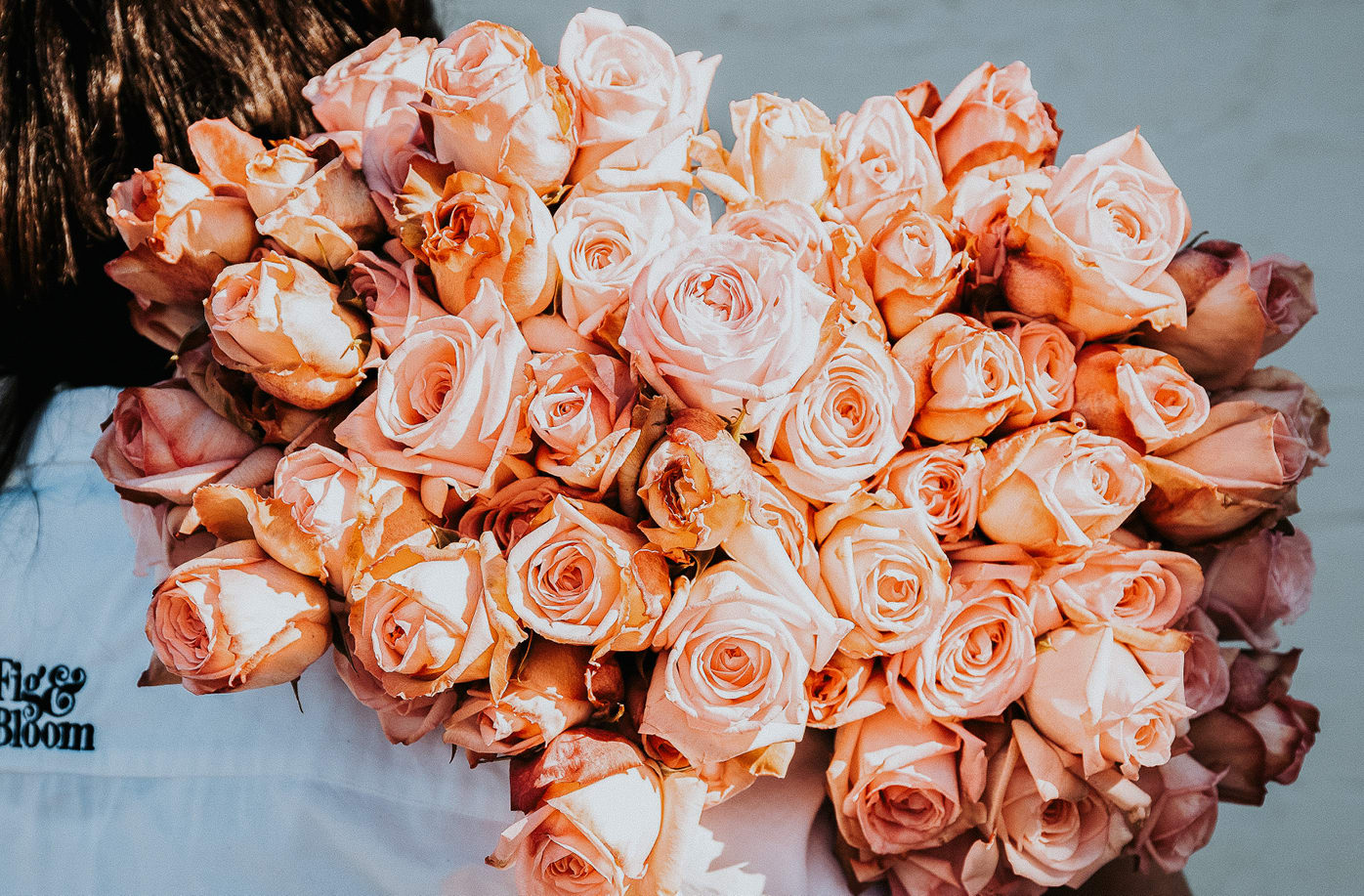 Your Comprehensive Guide to Roses