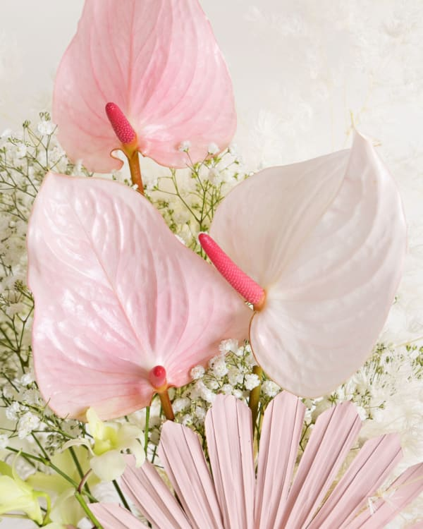 brisbane bouquet