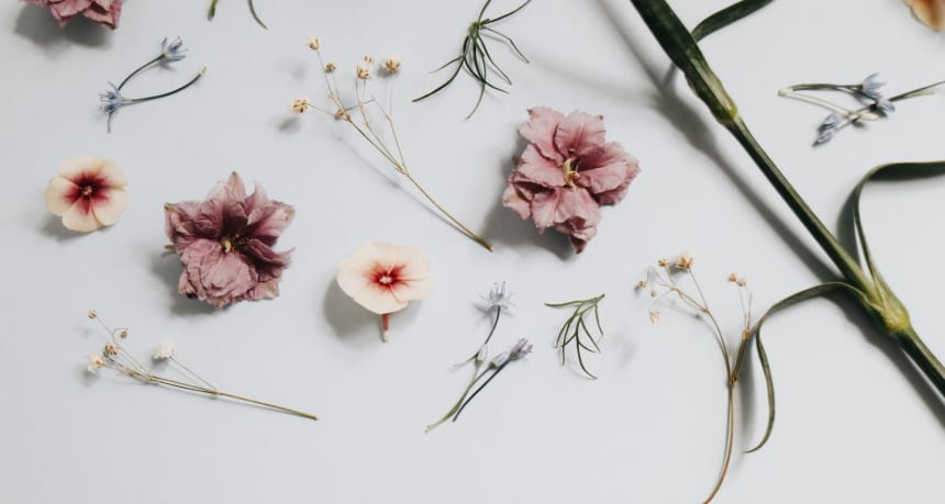 make flower food at home