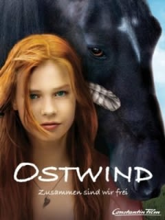 Filmposter van de film Stormwind (2013)