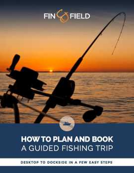How to plan and book a guided fishing trip