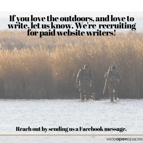 We're recruiting paid hunting, fishing and shooting writers. Interested in learning more? Email us at contributors@wideopenspaces.com to start a conversation. Thanks!