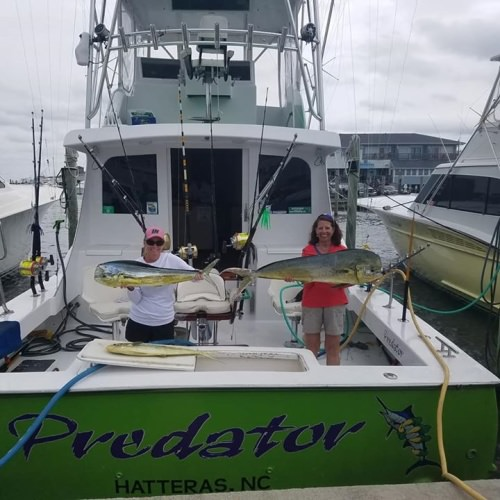 North Carolina is opening the Outer Banks on May 16th! Consider taking a visit and booking a fishing adventure. PC: Predator Sport Fishing #Bravo #NC #Outerbanks #Fishing #Adventure
