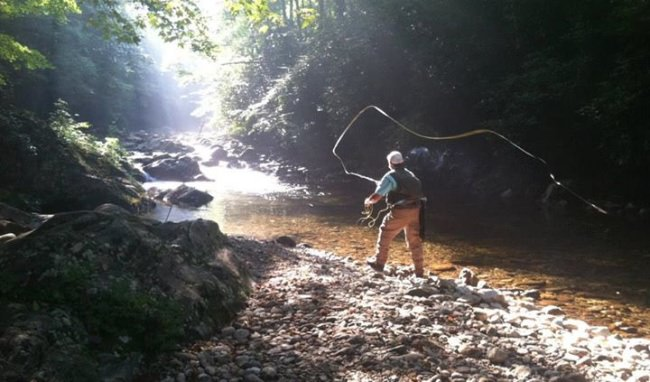 Asheville Fly Fishing Company will start guide trips again June 1st. #FlyFishing #Asheville #Trout #FinandField