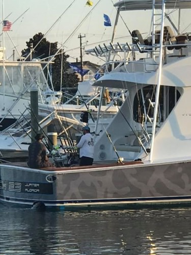 #WMO - #MJ & Catch 23 had great 1st White Marlin Open.