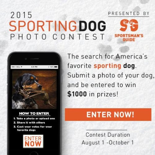 We're excited to announce the Sportsman's Guide 2015 Sporting Dog Contest!    Submit a photo of your dog and be entered to win up to $1,000 in prizes. Here's how to ENTER-----> http://bit.ly/1KN9aGK