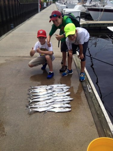 Awesome morning on the KAT-CHA LATER  these boys got to enjoy their first fishing trip on the ocean this morning and man they put a hurting on the Spanish. Book your charter today