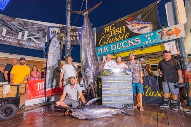 The Huk Big Fish Classic is a GO. Tournament Fishing Dates July 24-26, 2020 Fish 32 hour time slot from any port from NJ to VA More Info & Official Rules visit: www.bigfishclassic.com #BigFishClassic #Huk #OceanCity #MD #FinandField