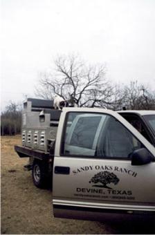 Sandy Oaks Ranch: DOVE PACKAGES