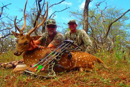 Nahele Outfitters: Axis Deer