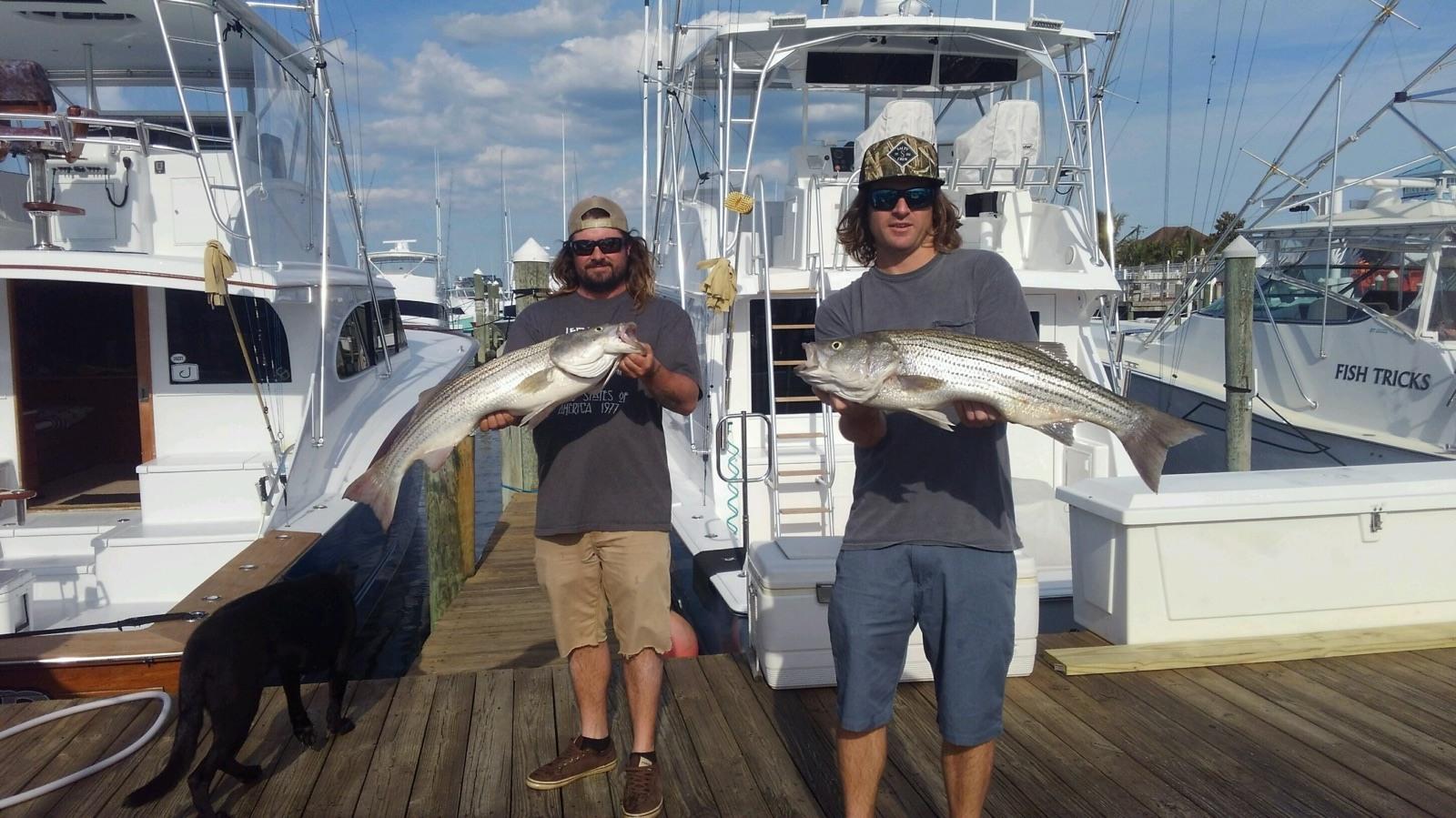 On the Run Charters: Inshore Fishing