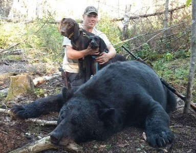 Maine Trophy Outfitters: Hound Hunting Bear