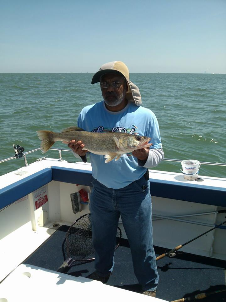 Shamrock Fishing Charters Lake Erie: Walleye Charter #1