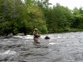 Maine Quest Adventures: Guided Fly Fishing Full Day