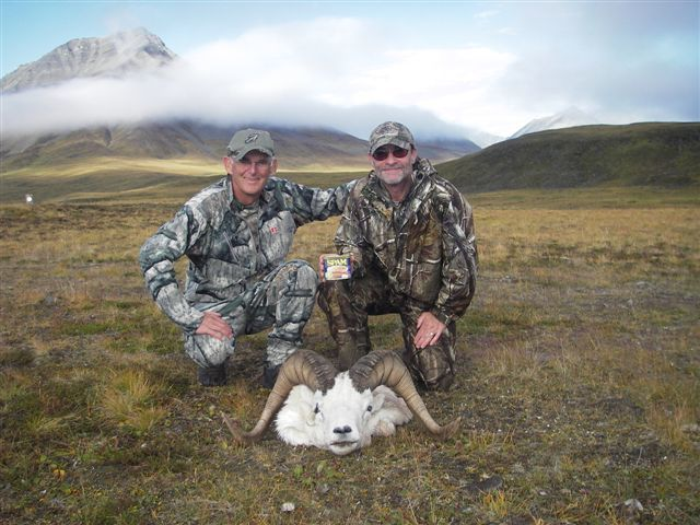 D And L Outfitters:  Dall Sheep Hunt