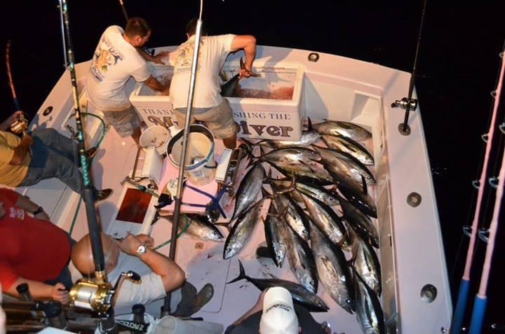 Go Deep Sportfishing Llc T A Muff Diver Charters: Inshore