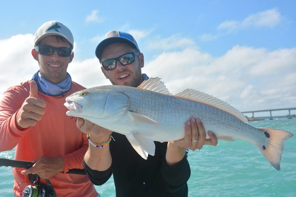 Going Coastal Fishing Charters: BlacktipH Series Full Day Inshore