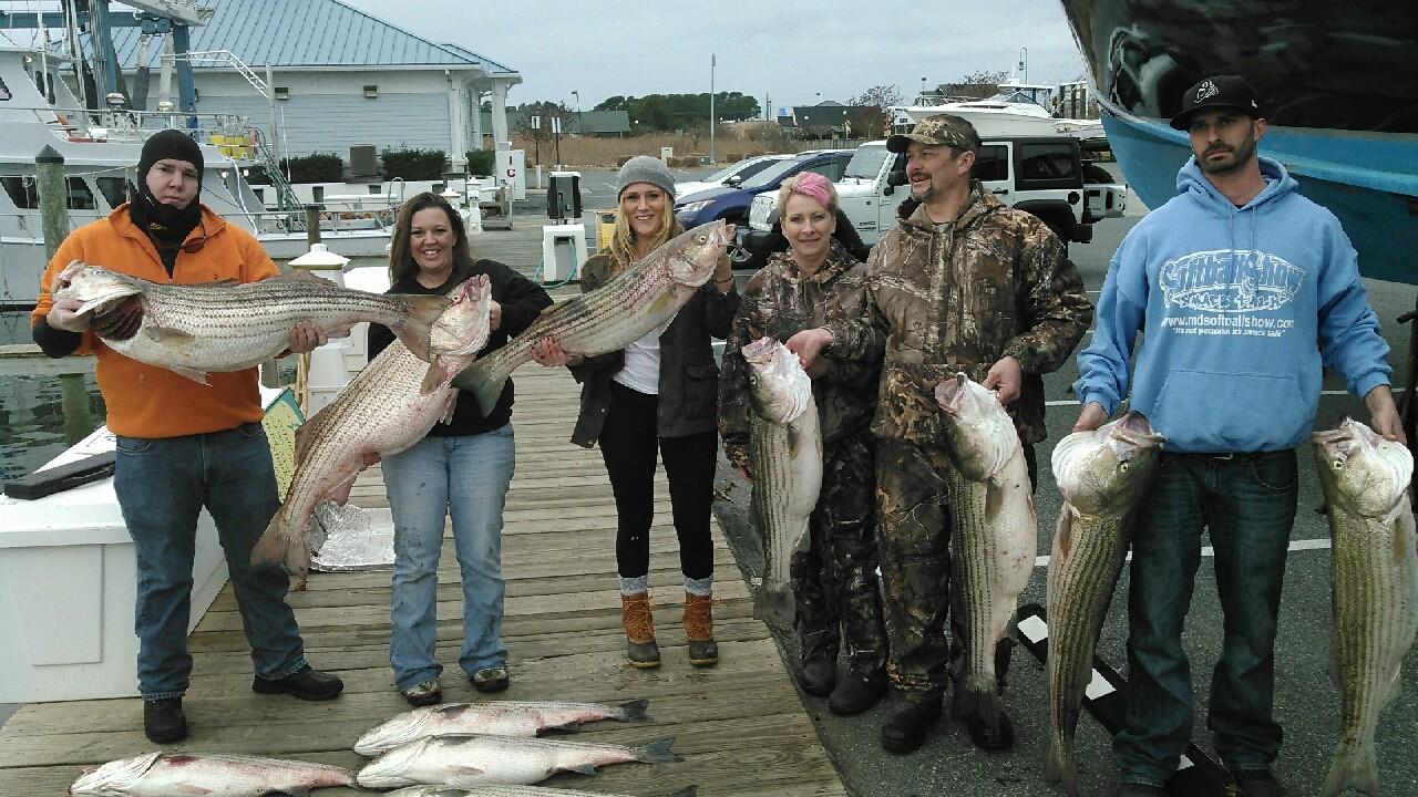 Husevo Offshore Sport Fishing: Rockfish Full Day
