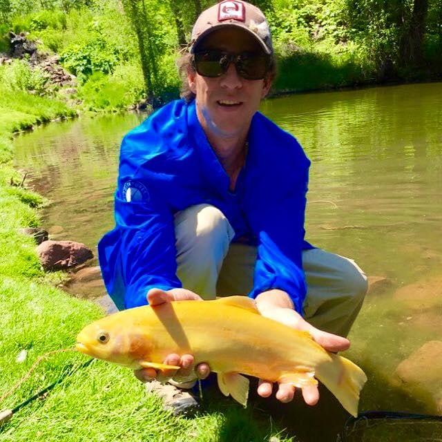 Gone Fishing Colorado: 3 Person Full Day Wade Fishing