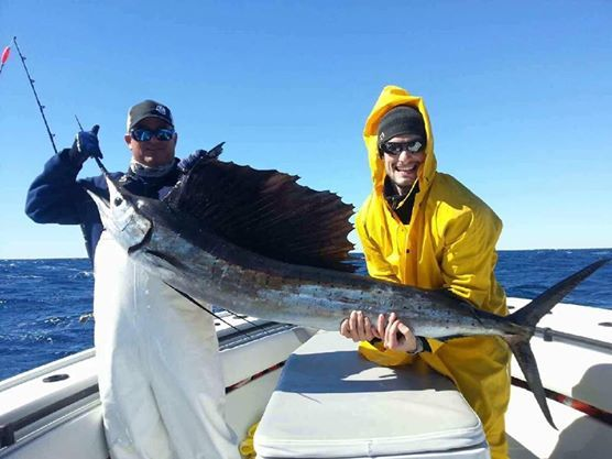 Catchalottafish: SWORD FISHING TRIP