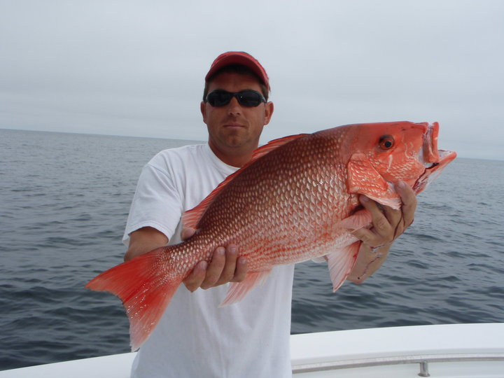 Fin Stalker Charters: Charter Package #2:  Inshore & Nearshore Reef 