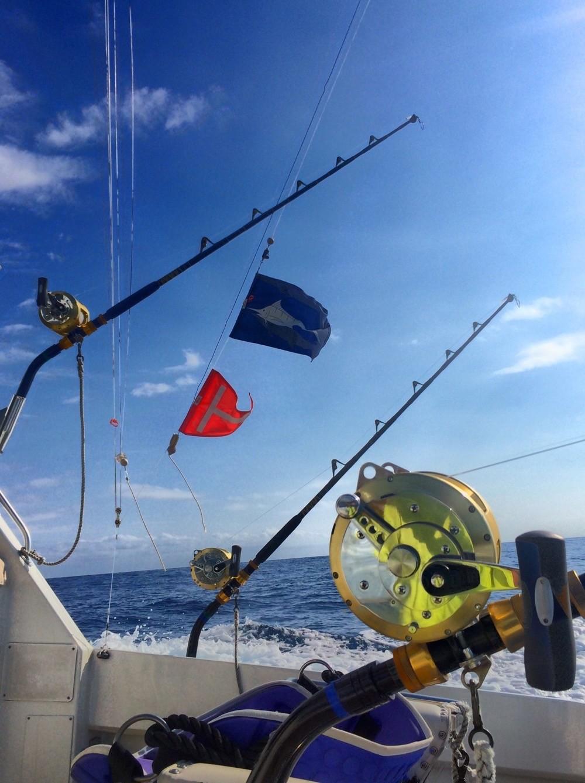 Waiopai Sport Fishing Charters: Overnight Fishing Trip