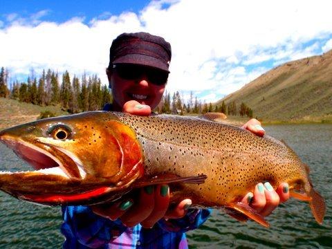 Jackson Hole Anglers: Half Day Fishing Trips