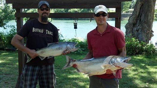 Seth Mitchells Guide Service: Trout & Steelhead Fishing Trips