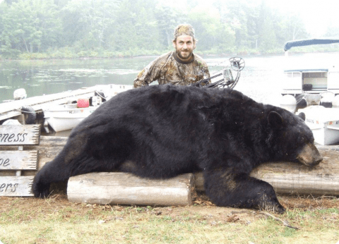 Wilderness Escape Outfitters: Bear Hunt