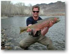 White Cloud Outfitters: Spring Steelhead Fishing
