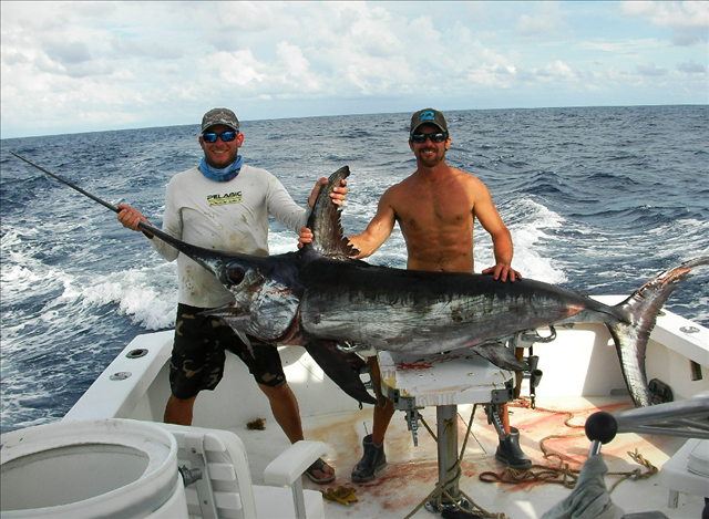 Captain Easy: Swordfish Trips