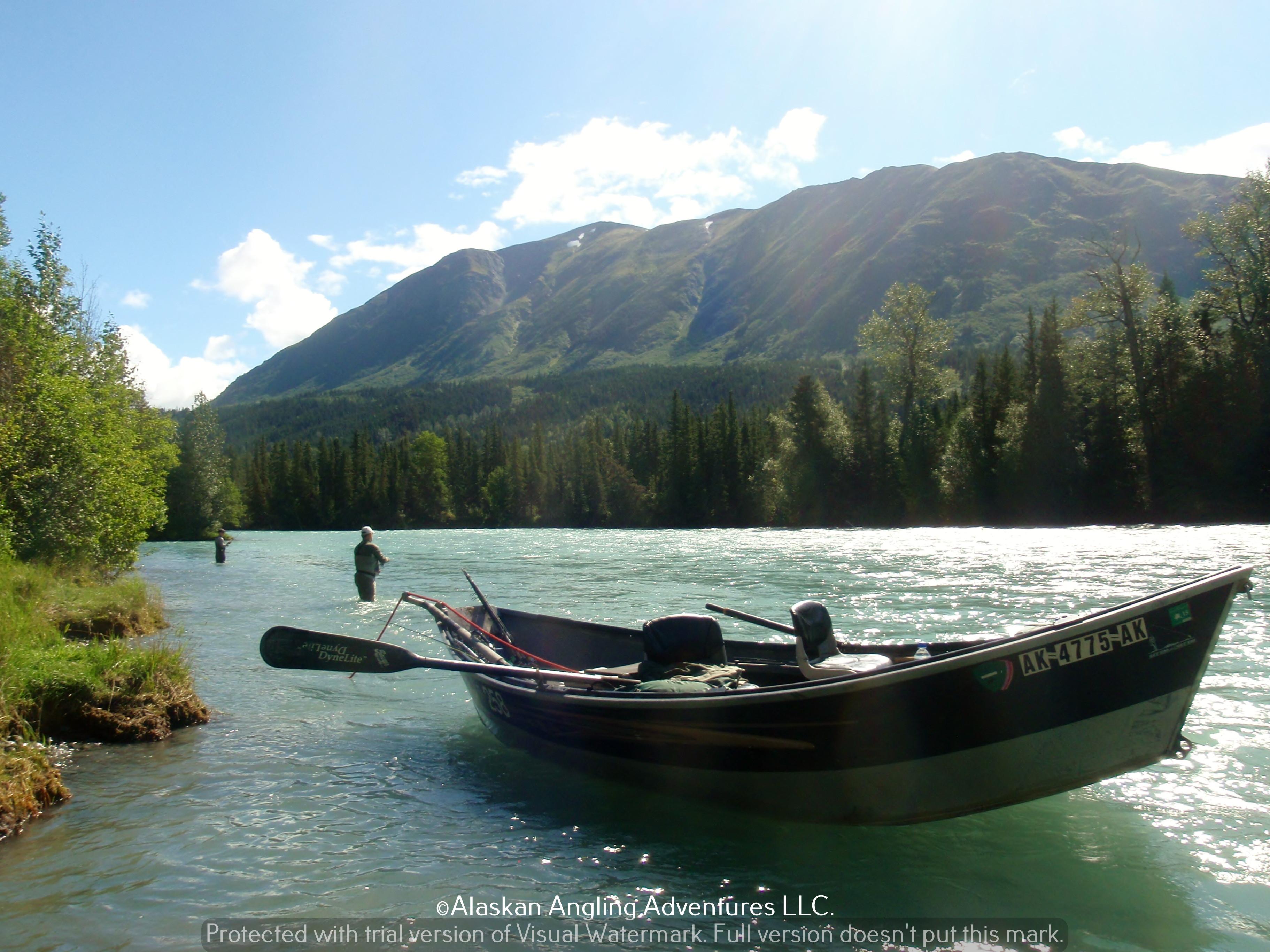 Alaskan Angling Adventures Llc.: Half Day Upper Kenai River Fishing Trip