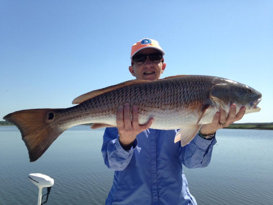 Marsh Maven Fishing Charters: INSHORE FISHING CHARTER