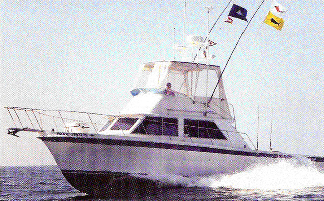 Pacific Venture Charter Service: Adventure / Whale Watching