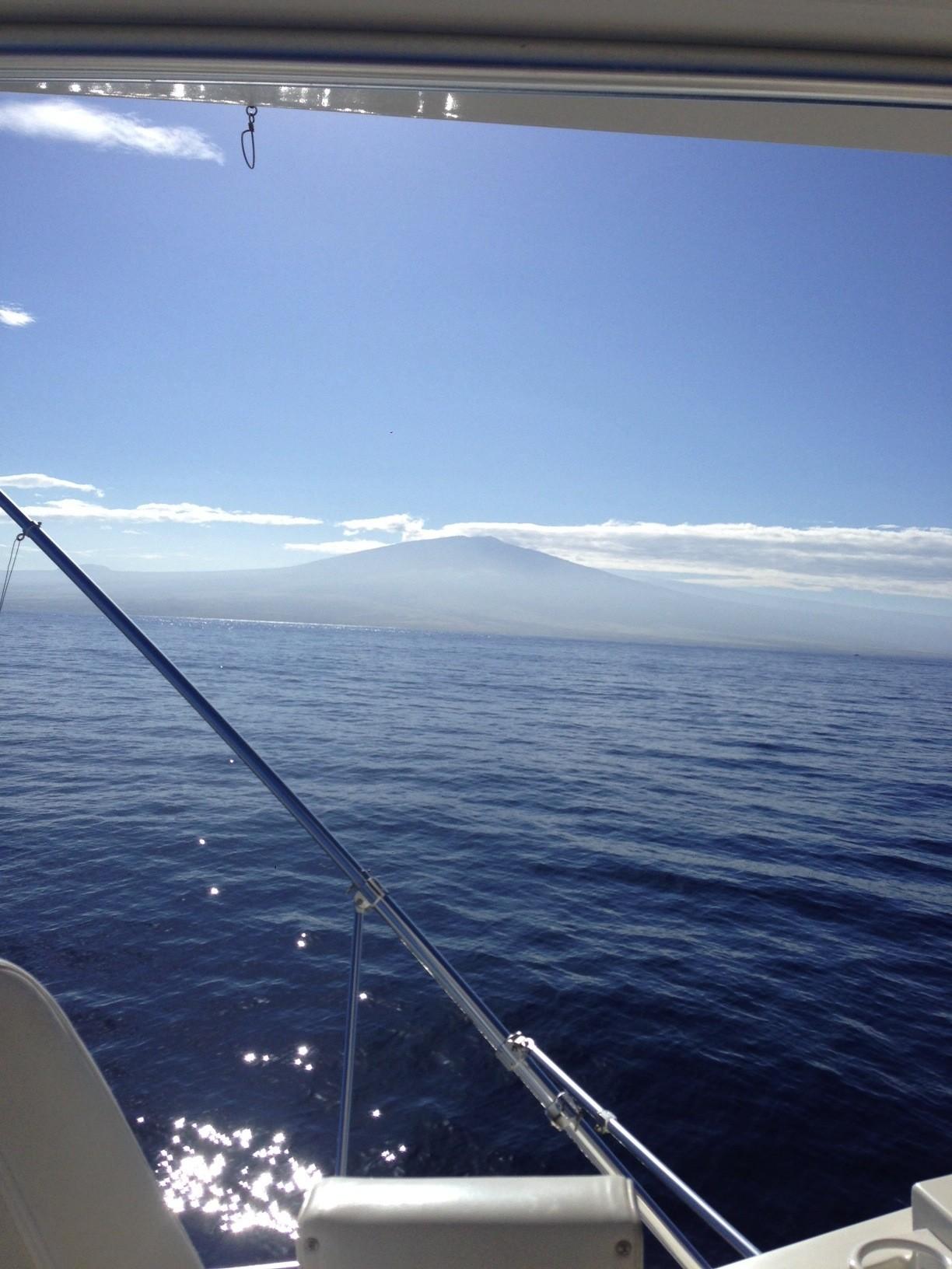 Foxy Lady Sportfishing: Full Day Charter