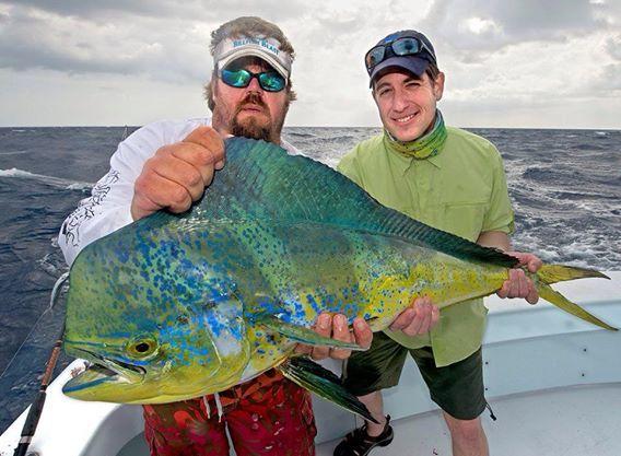 Predator Sportfishing Islamorada: Offshore