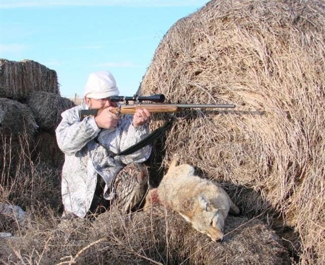 Twin River Hunts: Bear Hunts