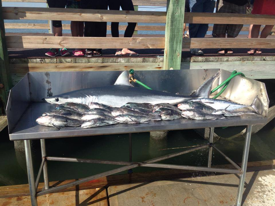 Integrity Charter Fishing: Full Day Trips
