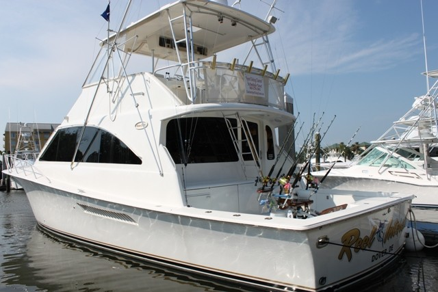 Charleston Sport Fishing Charters: Harbor Cruises